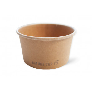Nature ice cream cup 8oz, kraft