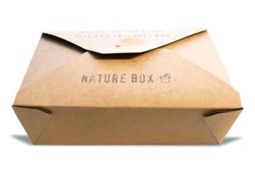 Lunchbox groß kraft